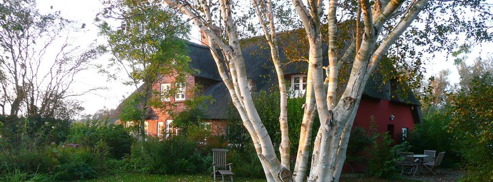 Landhaus-im-Herbst
