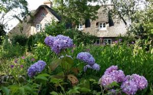 Landhausgarten-im-Sommer